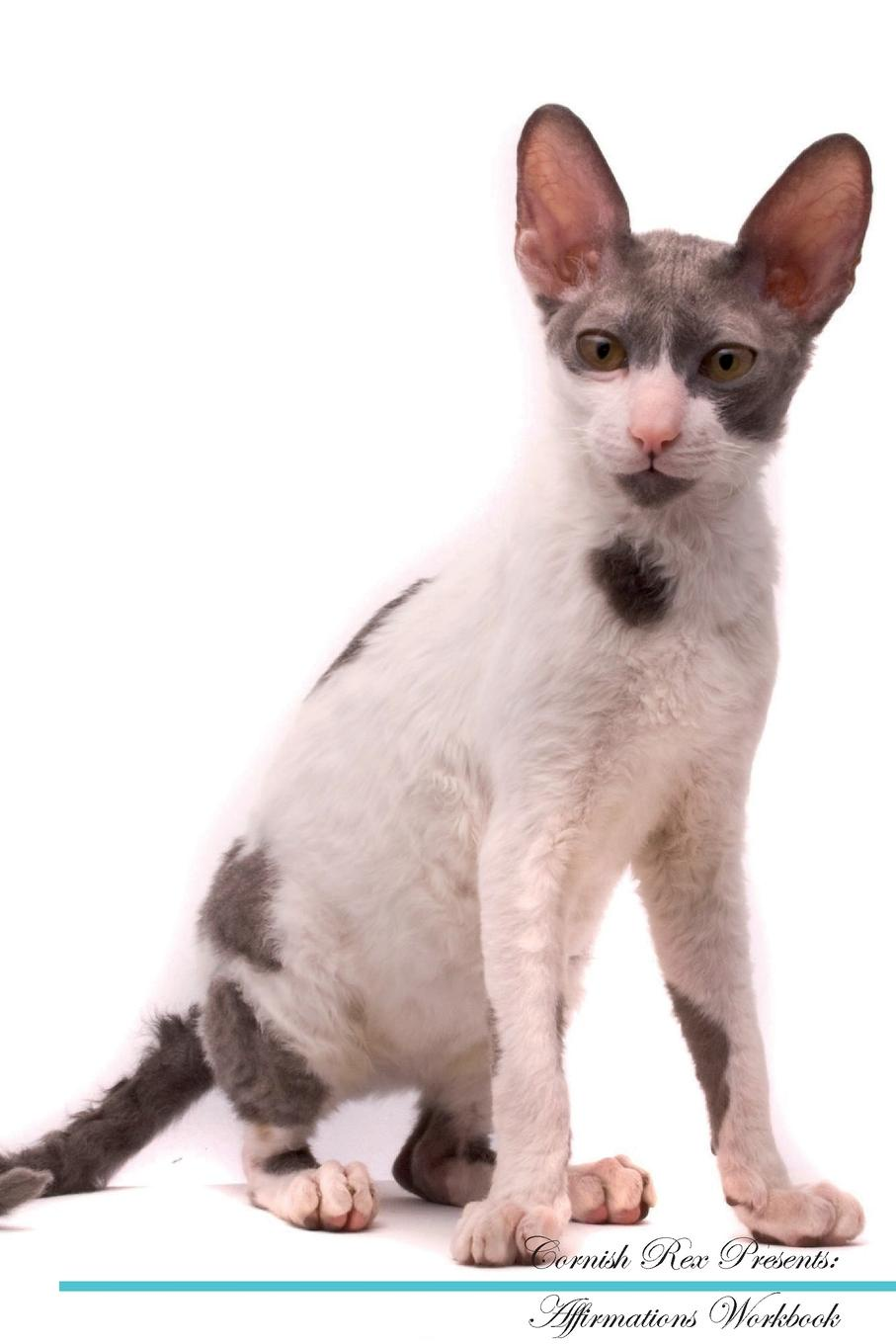 Live Positivity Cornish Rex Affirmations Workbook Presents. Positive and Loving Workbook. Includes: Mentoring Questions, Guidance, Supporting You.