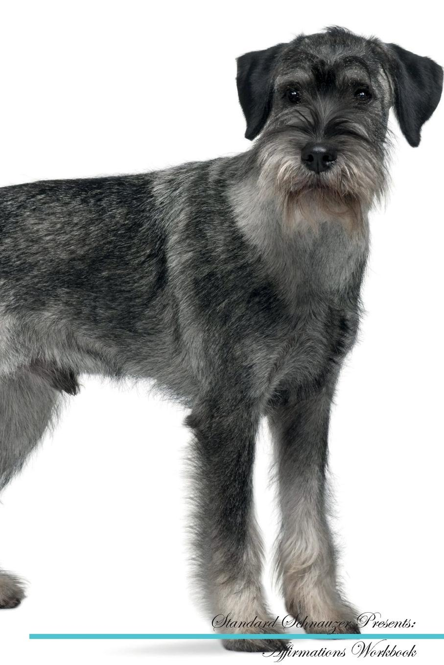 Standard Schnauzer Affirmations Workbook Standard Schnauzer Presents. Positive and Loving Affirmations Workbook. Includes: Mentoring Questions, Guidance, Supporting You.