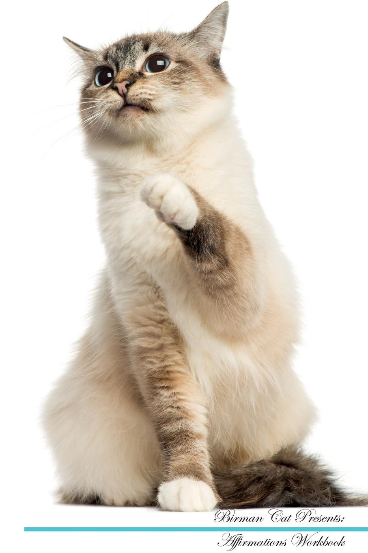 Фото - Live Positivity Birman Cat Affirmations Workbook Birman Cat Presents. Positive and Loving Affirmations Workbook. Includes: Mentoring Questions, Guidance, Supporting You. live positivity birman cat affirmations workbook birman cat presents positive and loving affirmations workbook includes mentoring questions guidance supporting you