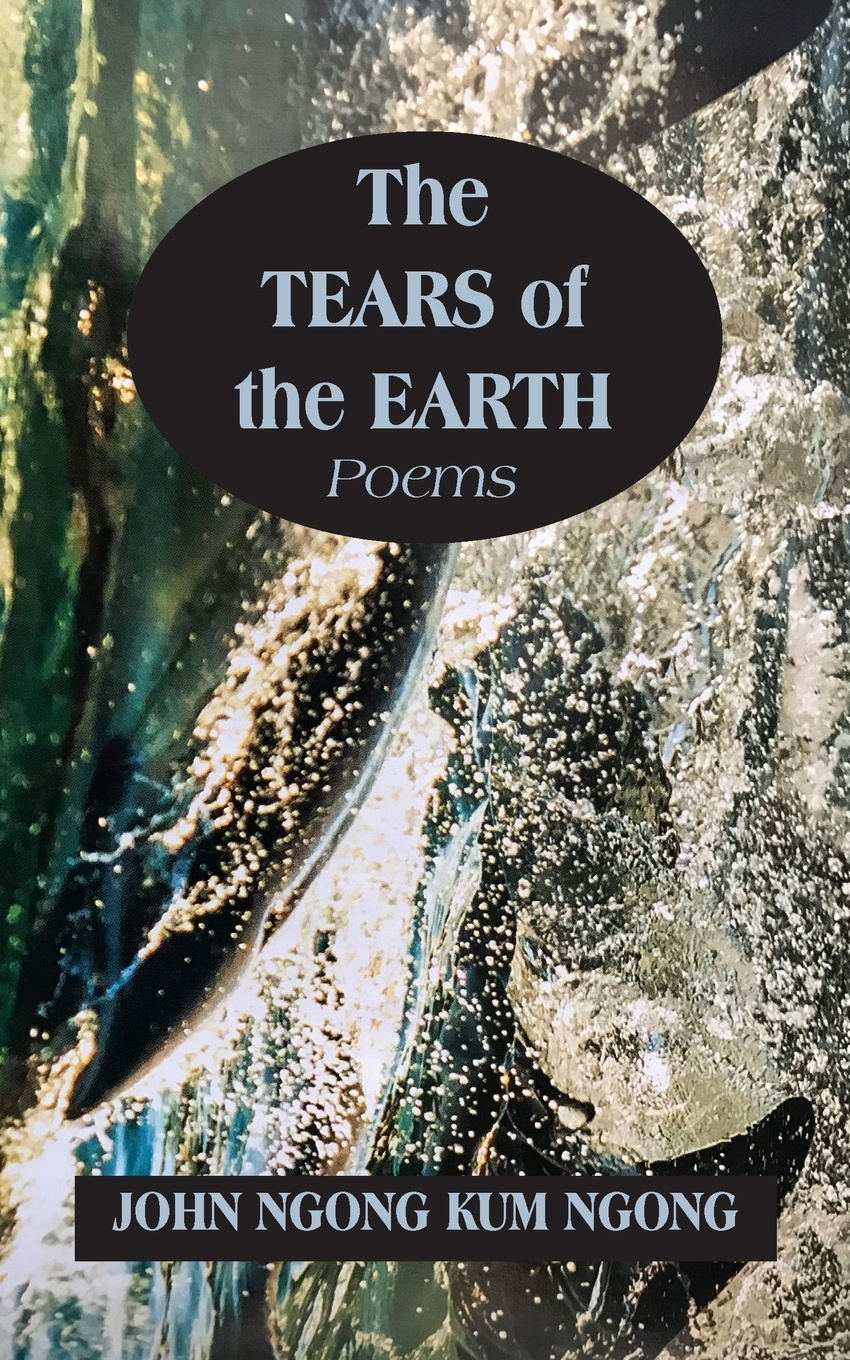 John Ngong Kum Ngong The Tears of the Earth schuenemeyer john statistics for earth and environmental scientists