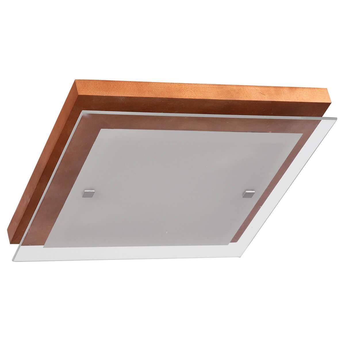 Настенно-потолочный светильник Дубравия 106-21-22/1H, E27, 60 Вт