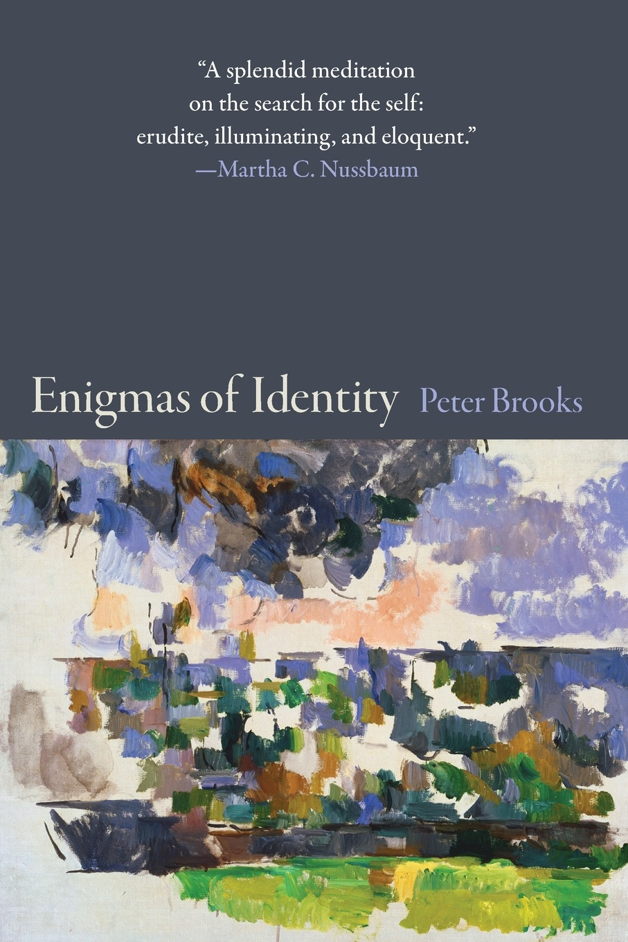Peter Brooks Enigmas of Identity свитшот only