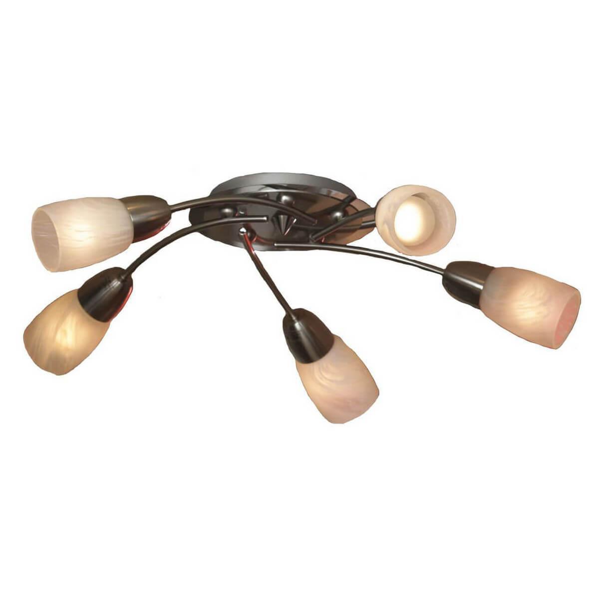 Потолочный светильник Lussole LSQ-6907-05, E14, 40 Вт потолочная люстра lussole cevedale lsq 6917 07