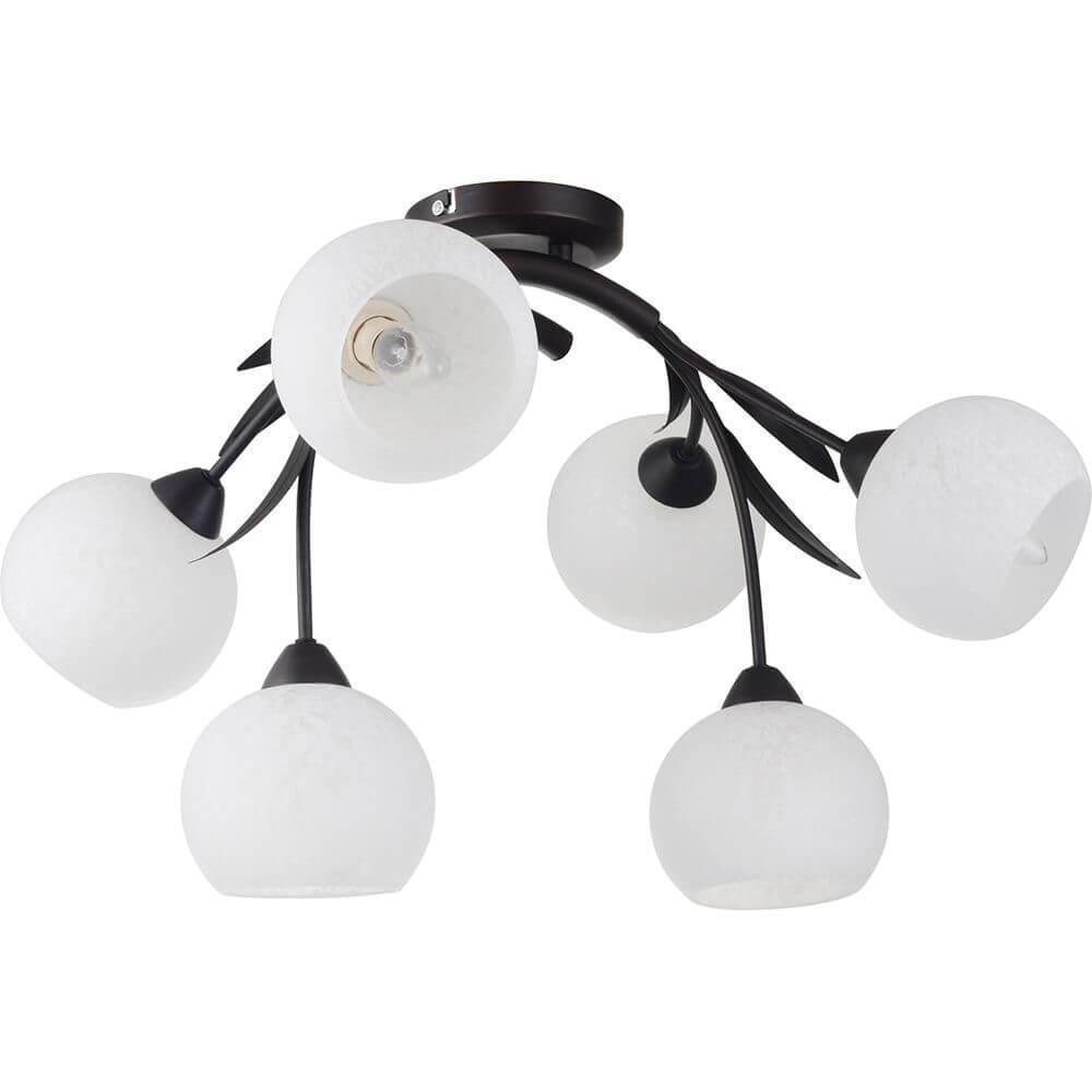 Потолочный светильник Lussole LSF-6283-06, E14, 40 Вт