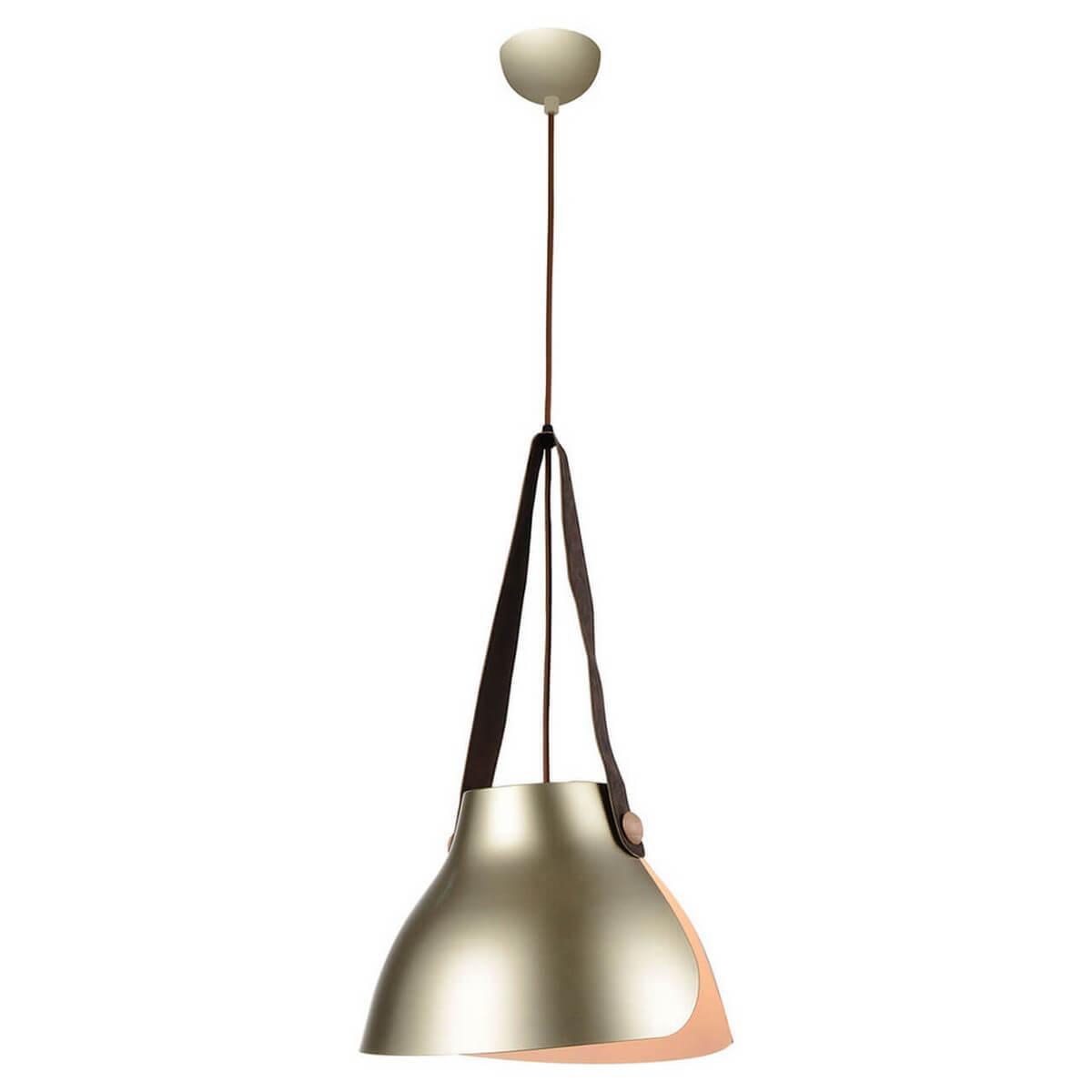 Подвесной светильник Lussole LOFT GRLSP-9843, E27, 11 Вт подвесной светильник lussole grlsp 9876 медь
