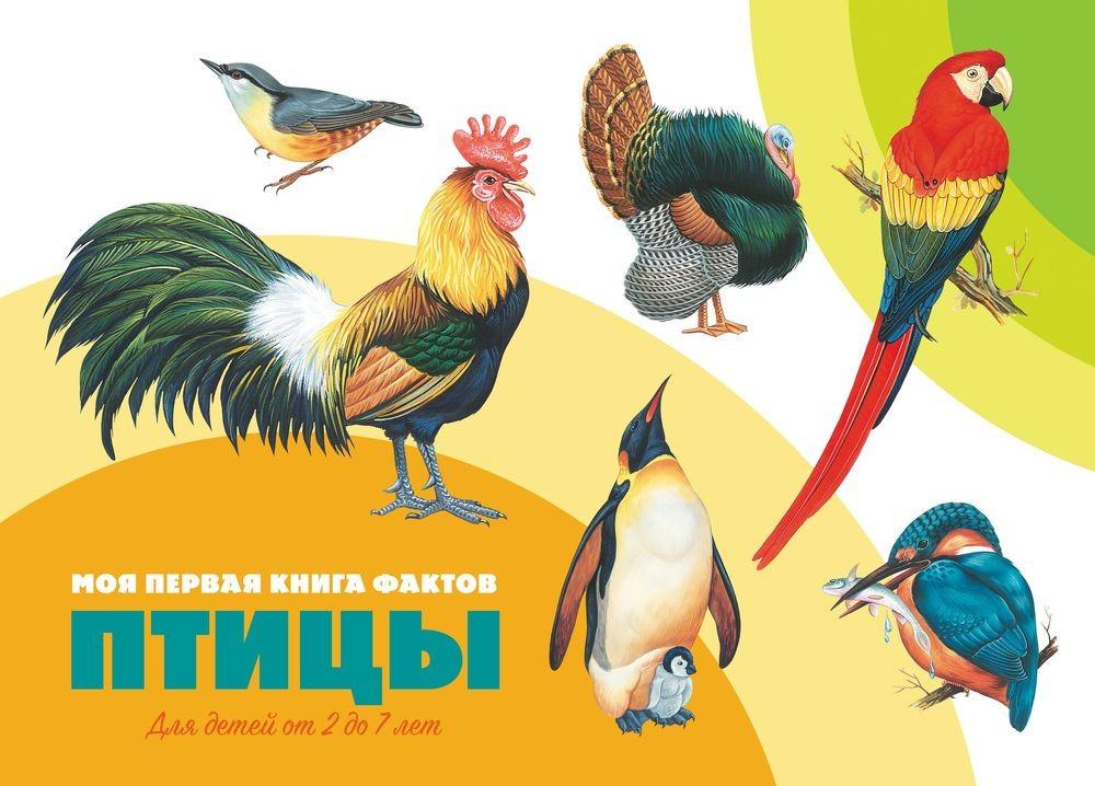 Моя первая книга фактов. Птицы. Книга ND Play александрова о дроздова е моя первая энц с накл птицы и насекомые