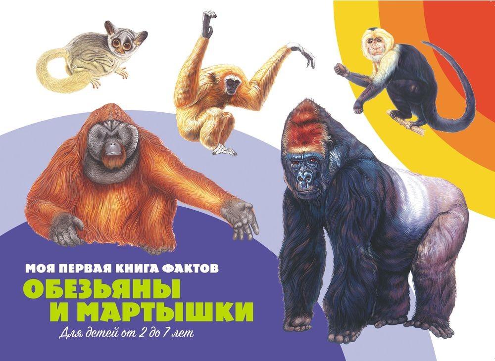 Моя первая книга фактов. Обезьяны и мартышки. Книга ND Play цена в Москве и Питере