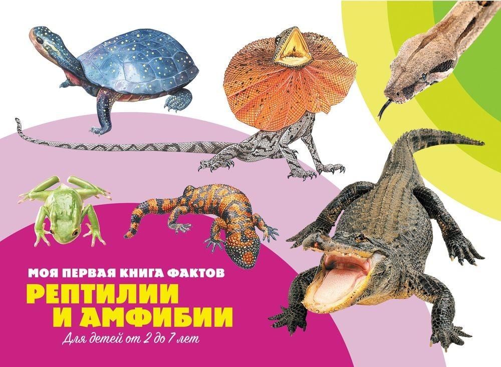 Рептилии и амфибии цена в Москве и Питере