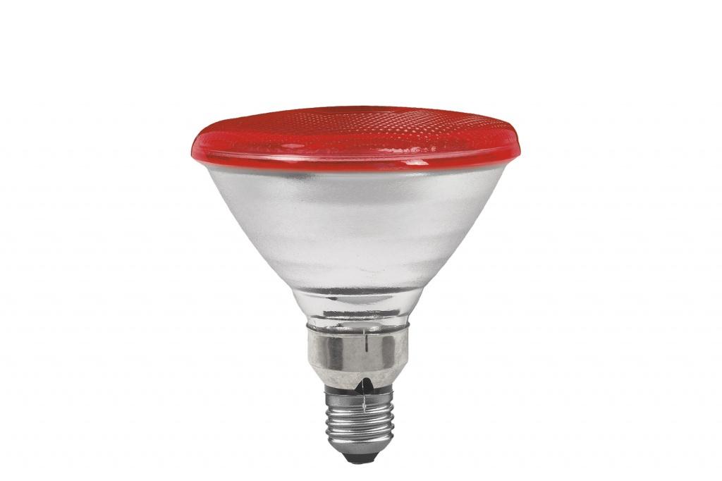 Лампочка Paulmann 27281 80 Вт, Накаливания paulmann лампа накаливания paulmann e14 883 31