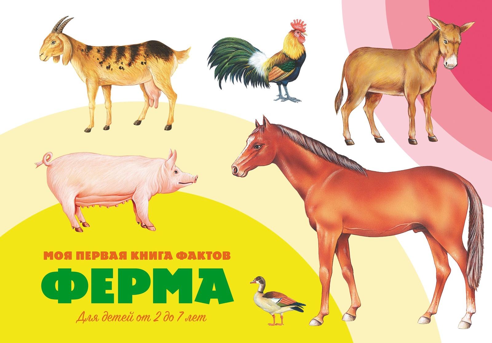 Моя первая книга фактов. Ферма. Книга ND Play цена в Москве и Питере