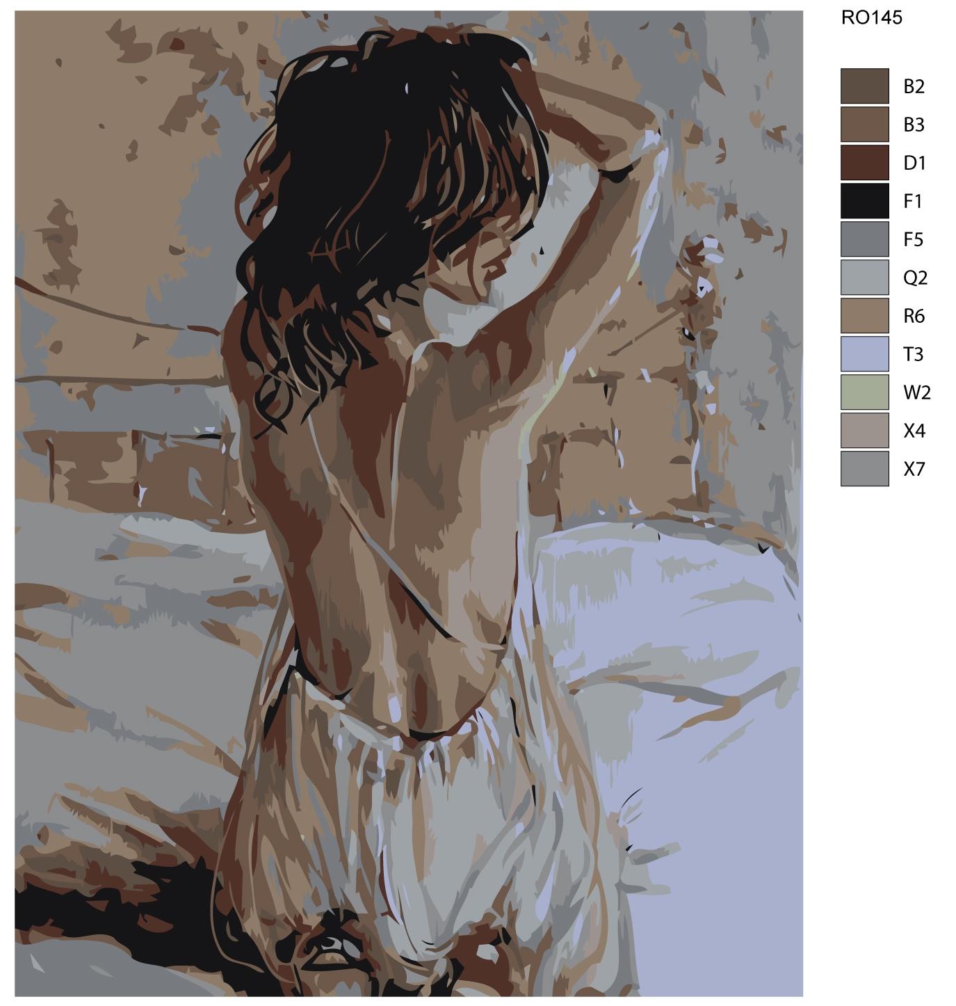 Картина по номерам, 80 x 100 см, RO145