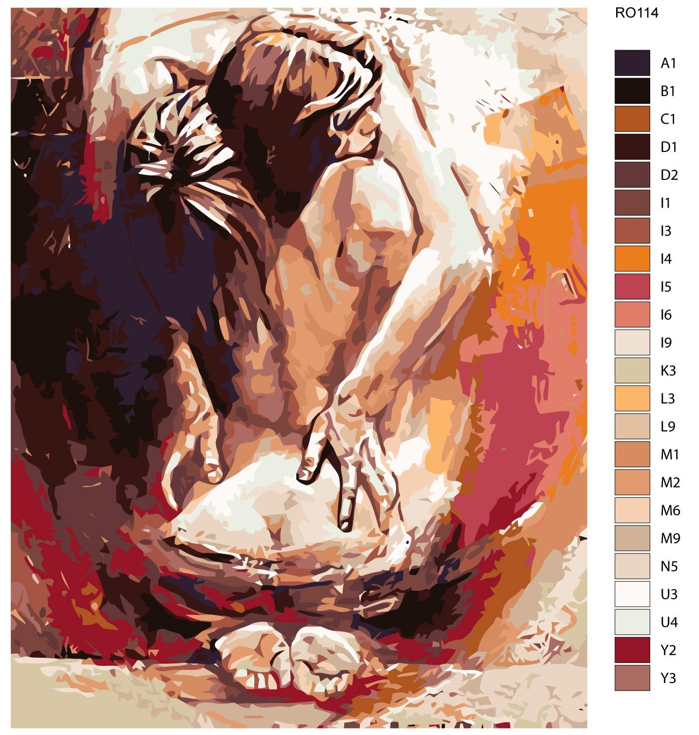Картина по номерам, 80 x 100 см, RO114