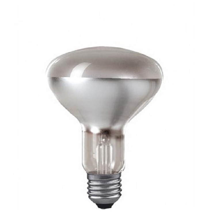 Лампочка Paulmann 26000 100 Вт, Накаливания paulmann лампа накаливания paulmann e14 883 31