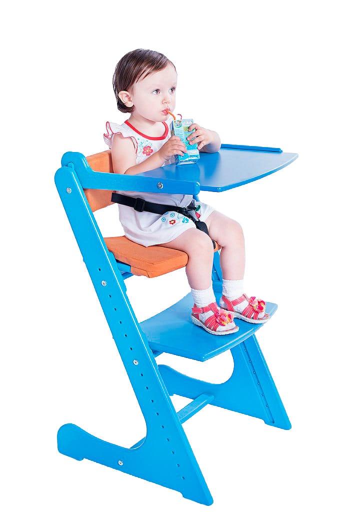 Стульчик для кормления Конек Горбунек (цвет каркаса: синий) подушки конек горбунек конек горбунек