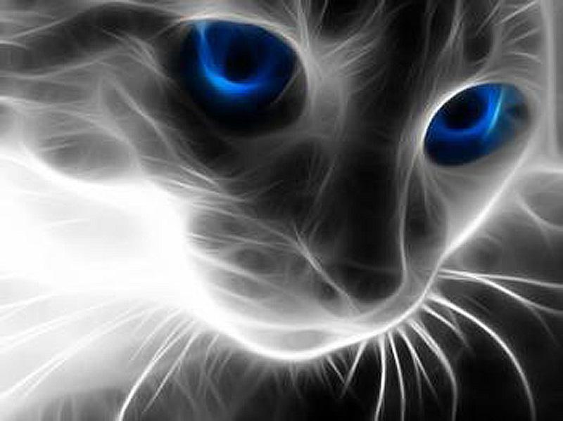 Алмазная мозаика Алмазная Живопись Кошачий взгляд, 30x40 см алмазная вышивка синицы на рябине алмазная живопись 55x40см