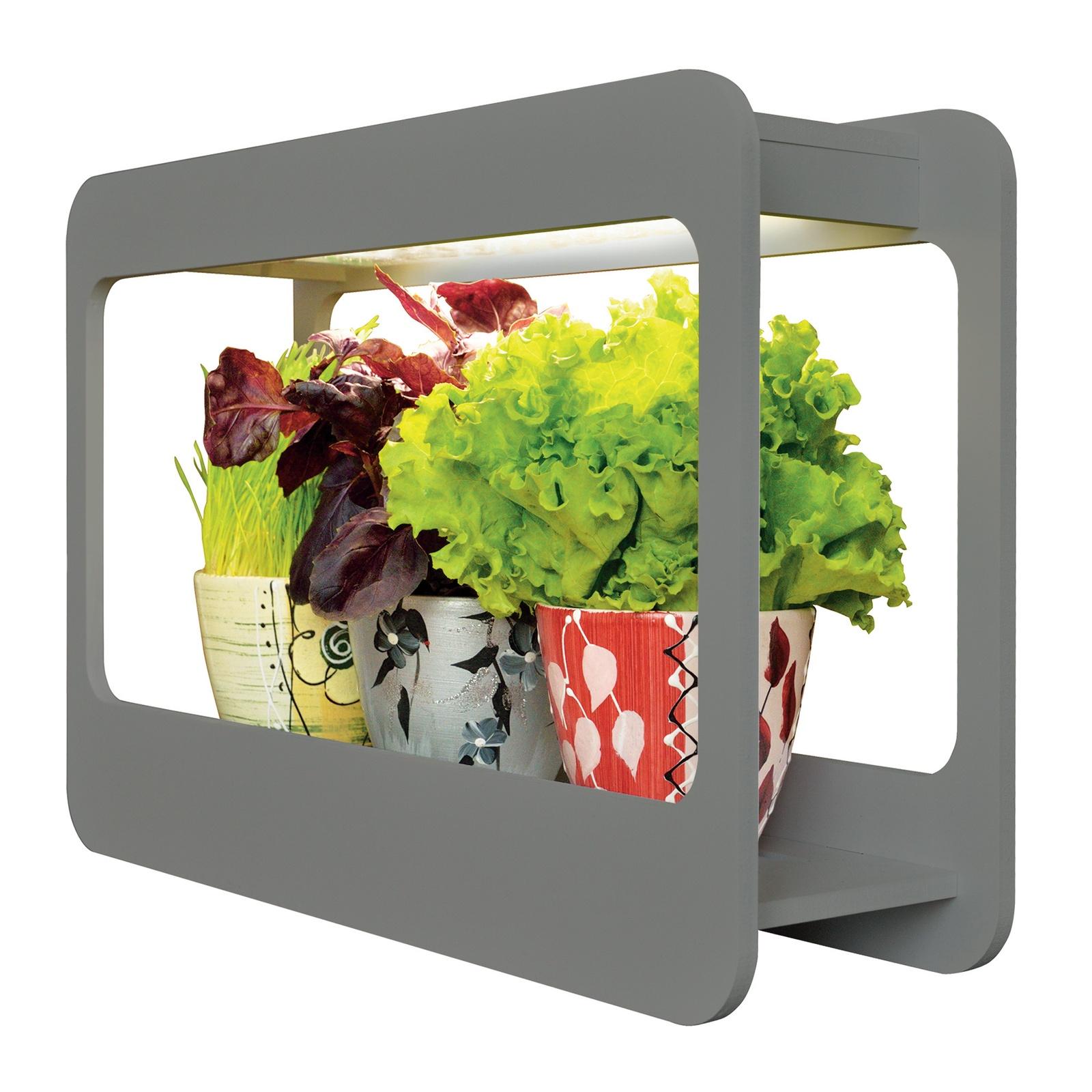 Лампа для растений Uniel ULT-P30-15W/SPFS, Без цоколя, 15 Вт подсветка для растений uniel ult p30 15w spfs ip40 white