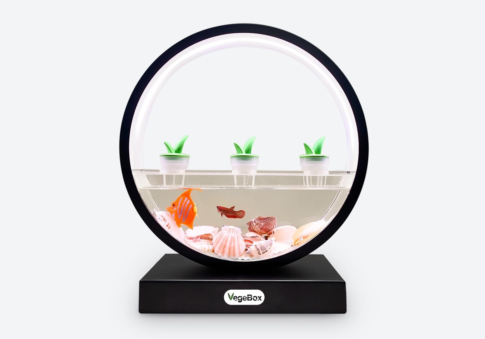Светодиодный светильник Vegebox F-Box - оригинальное украшение интерьера f you box