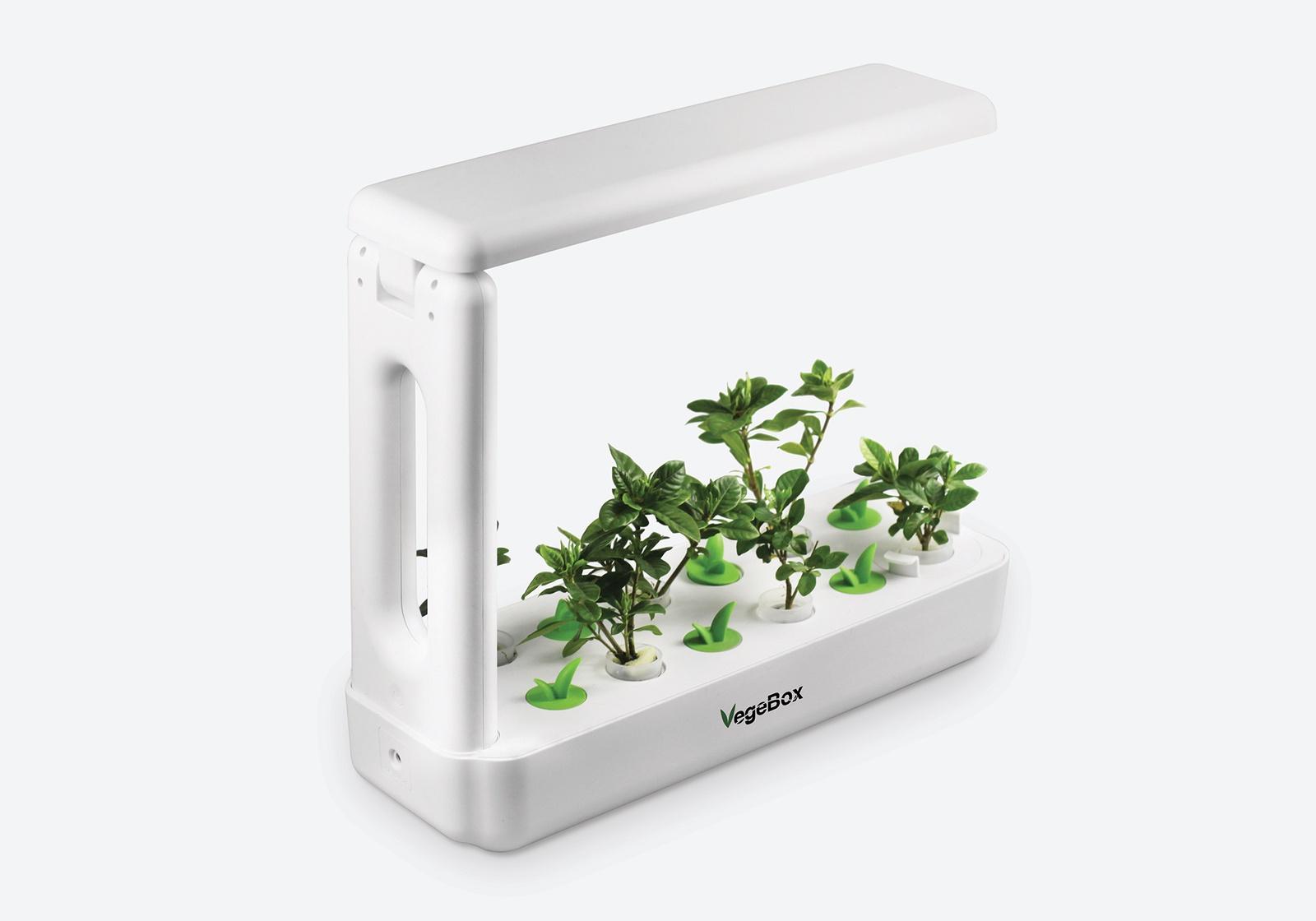 Кухонная Садовая ферма VegeBox K-Box - мини огород дома