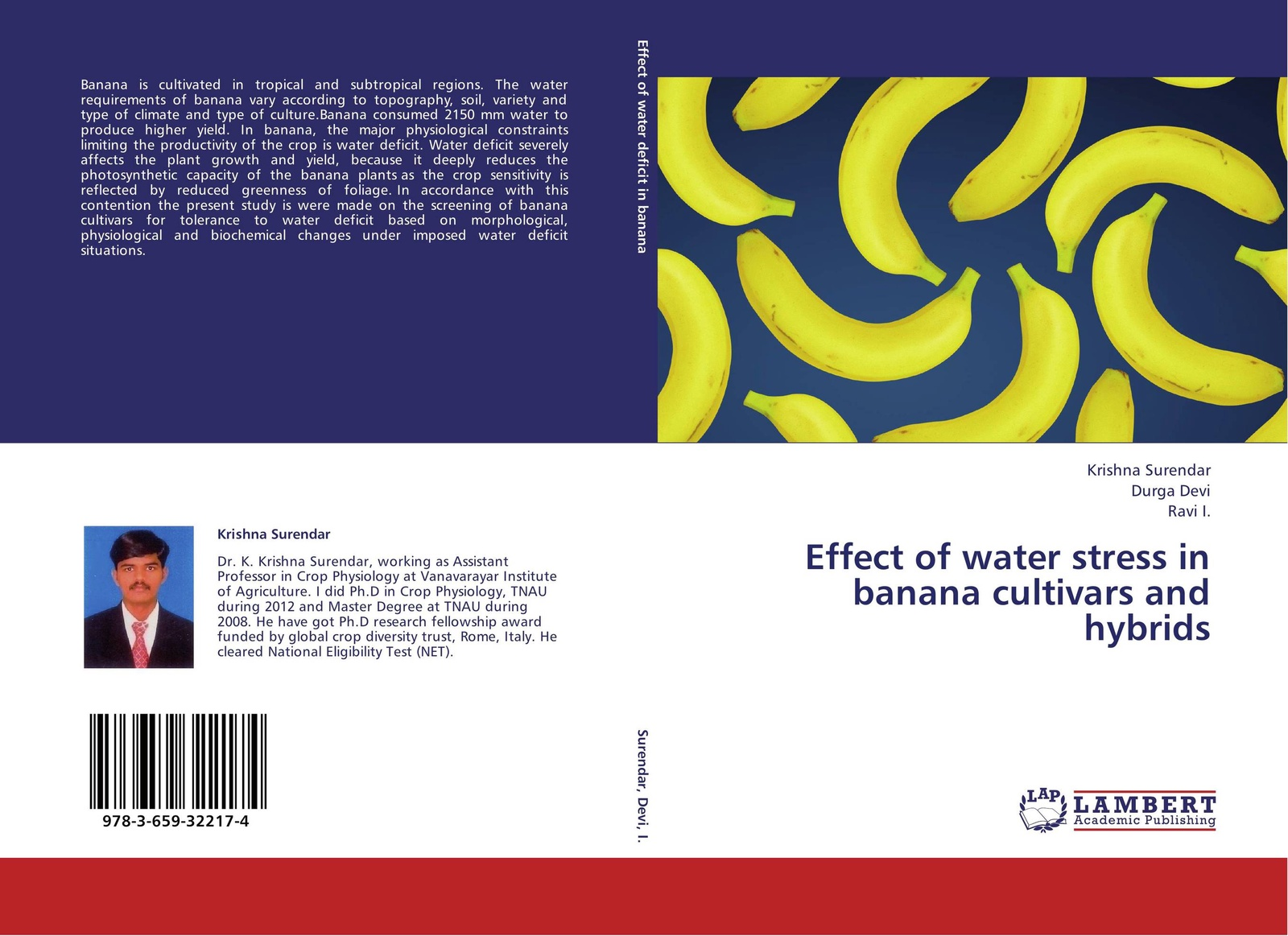 Фото - Krishna Surendar,Durga Devi and Ravi I. Effect of water stress in banana cultivars and hybrids banana print hot water bag