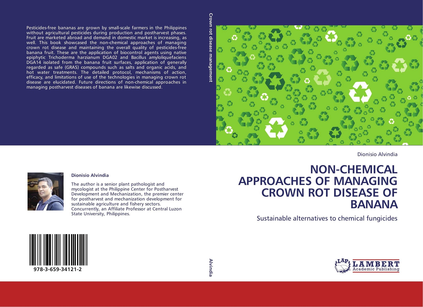 Фото - Dionisio Alvindia NON-CHEMICAL APPROACHES OF MANAGING CROWN ROT DISEASE OF BANANA banana print hot water bag