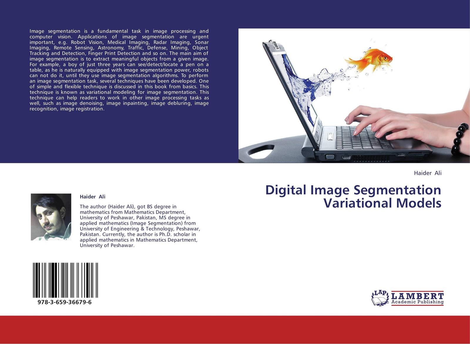 Haider Ali Digital Image Segmentation Variational Models цена и фото