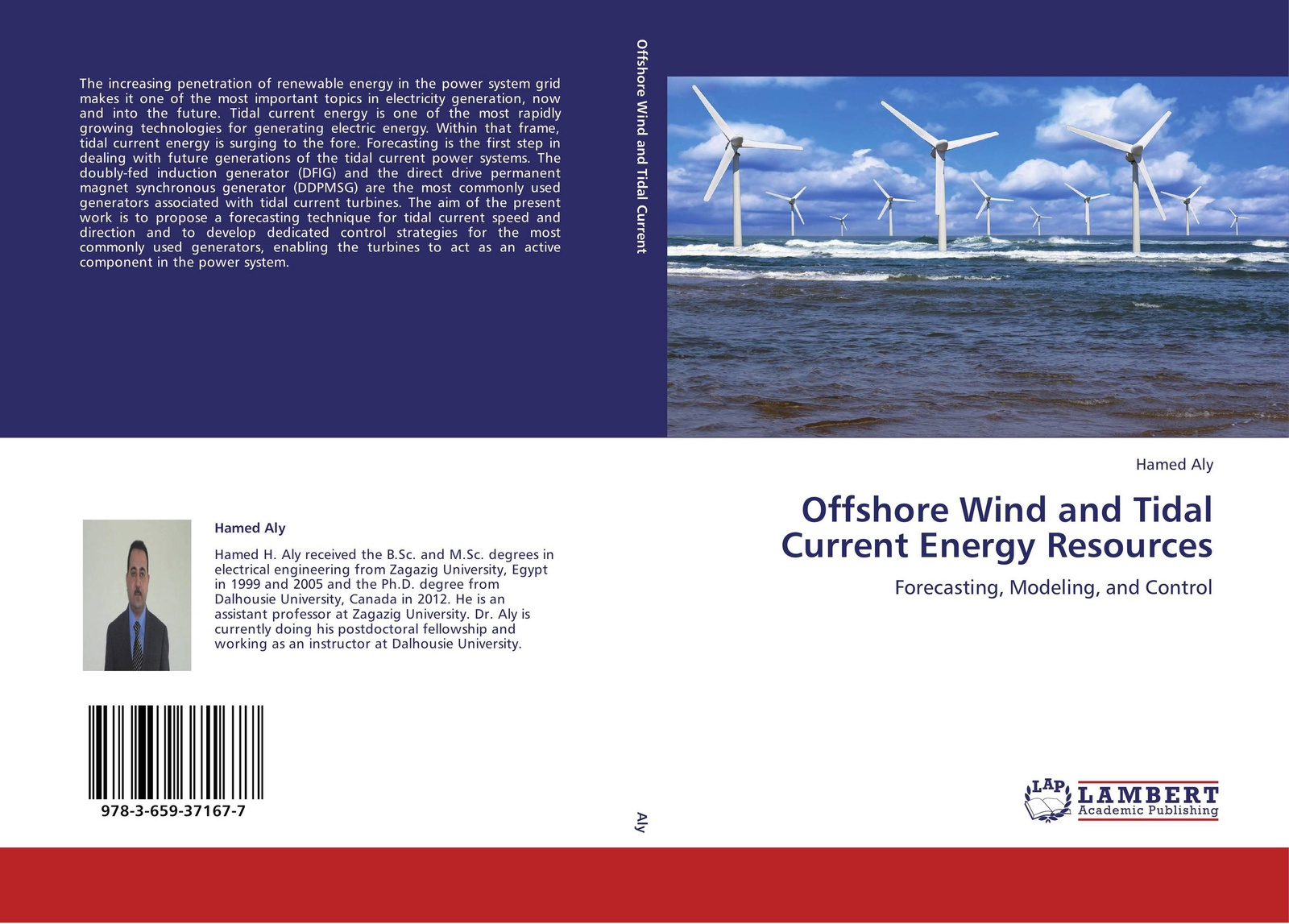 Hamed Aly Offshore Wind and Tidal Current Energy Resources the step of the step of the piezoelectric generator is to generate electricity