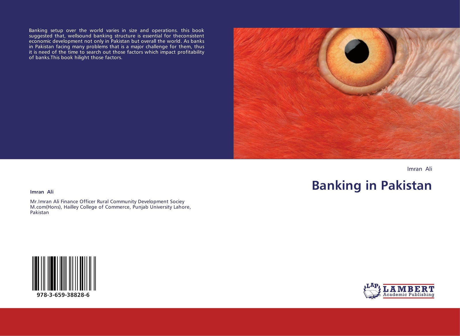Imran Ali Banking in Pakistan beate foerstner in house banking
