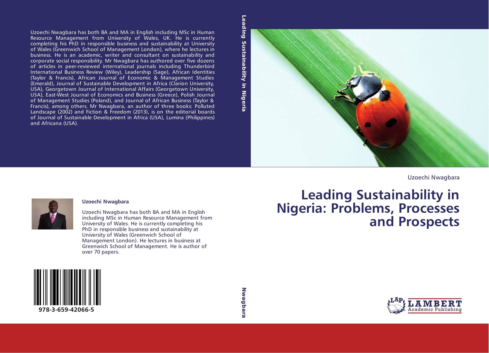 Uzoechi Nwagbara Leading Sustainability in Nigeria: Problems, Processes and Prospects