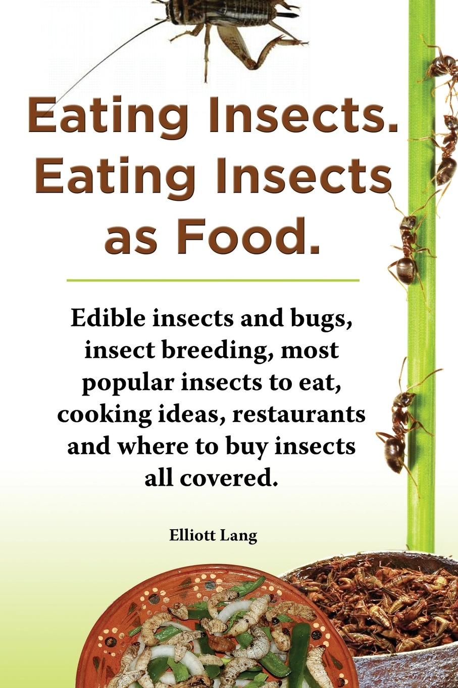 Elliott Lang Eating Insects. Insects as Food. Edible and Bugs, Insect Breeding, Most Popular to Eat, Cooking Ideas, Restaurants Where