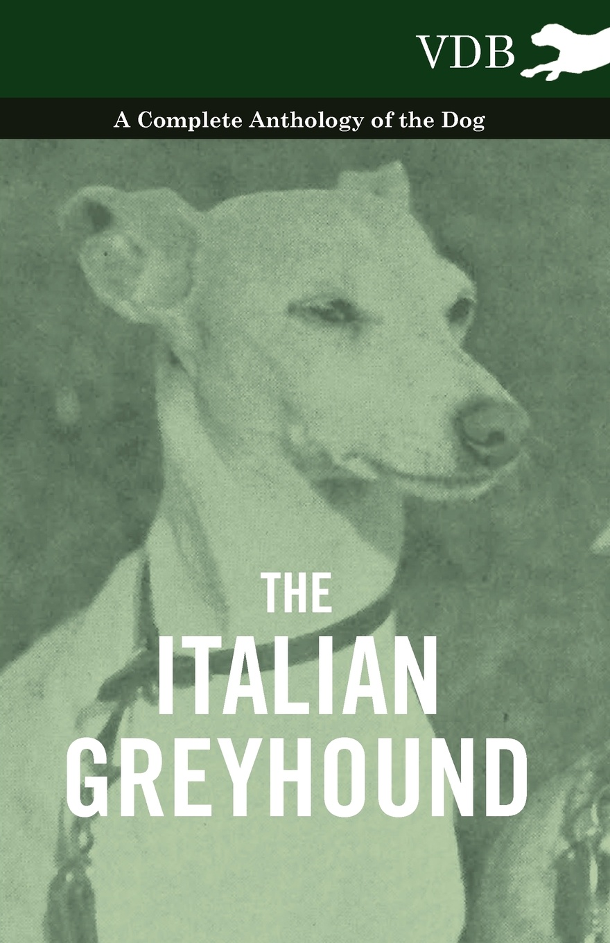 Фото - Various The Italian Greyhound - A Complete Anthology of the Dog