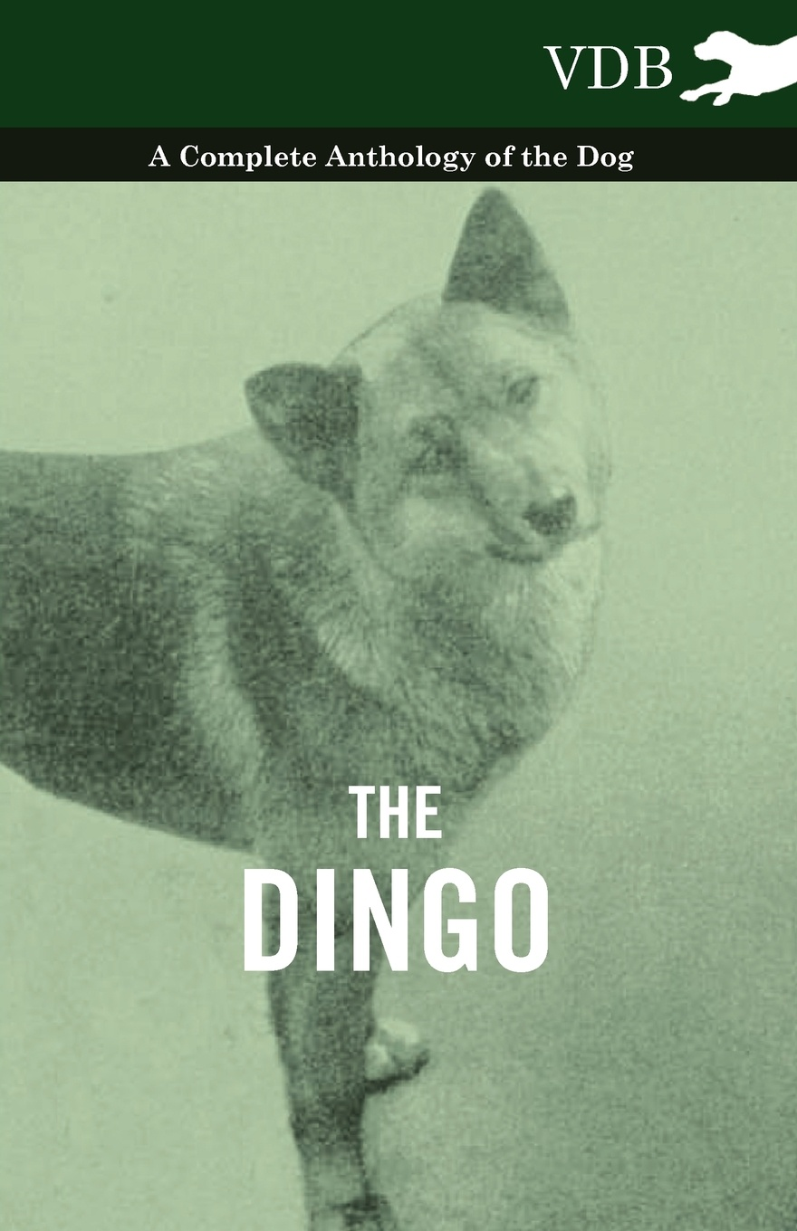 Various The Dingo - A Complete Anthology of the Dog