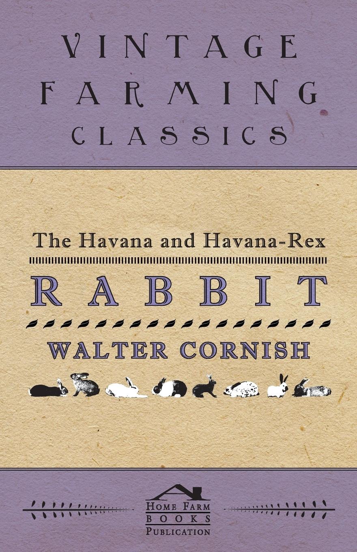 Walter Cornish The Havana and Havana-Rex Rabbit