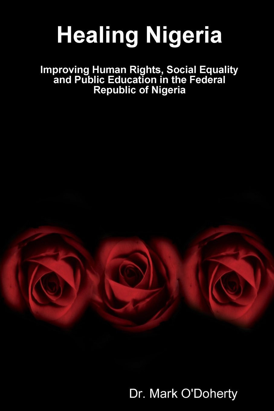 Dr. Mark O'Doherty Healing Nigeria - Improving Human Rights, Social Equality and Public Education in the Federal Republic of Nigeria ernest udalla public policy in nigeria s fourth republic 1999 2010
