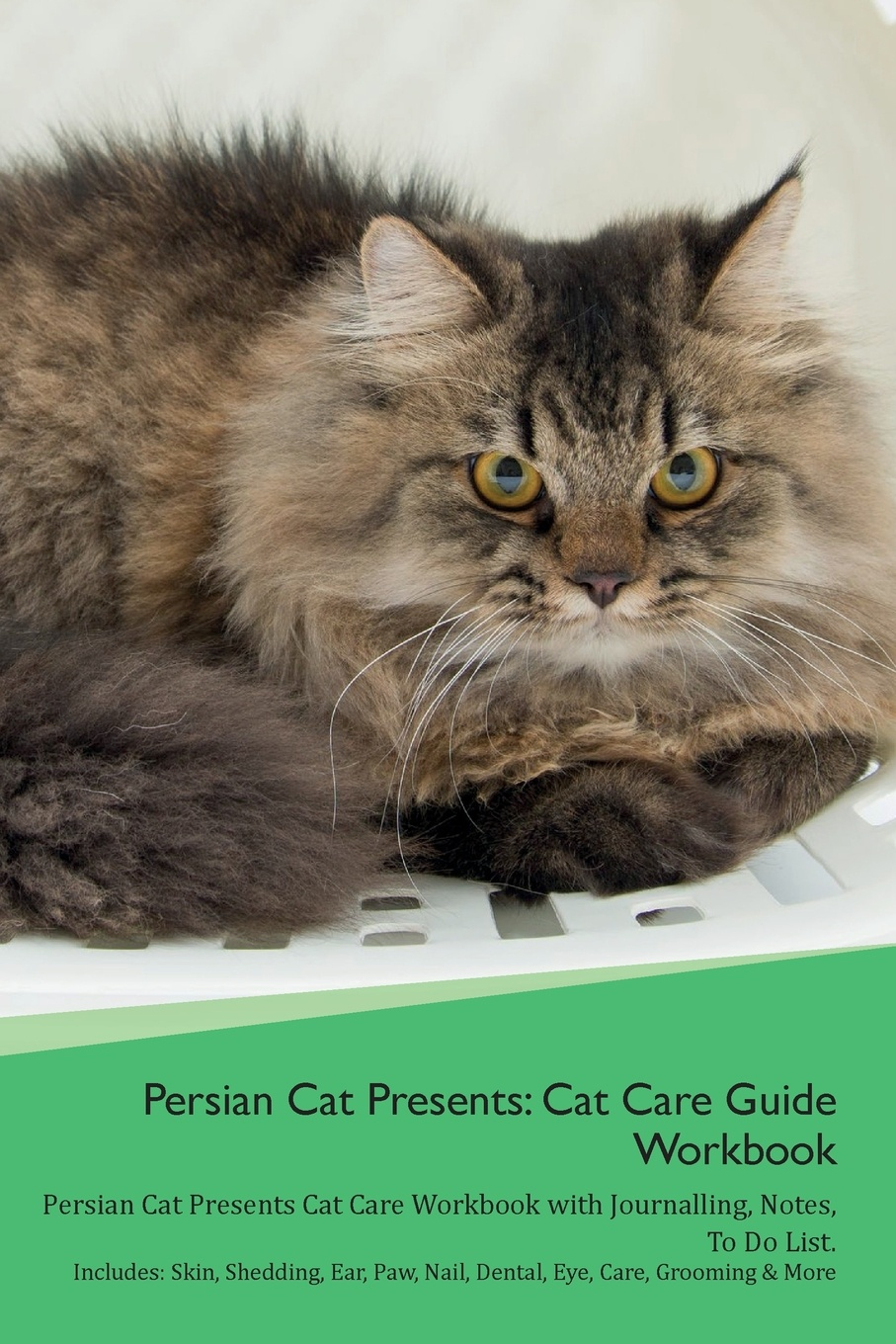 Productive Cat Persian Presents. Care Guide Workbook Presents with Journalling, Notes, To Do List. Includes: Skin, Shedding, Ear, Paw, Nail, Dental, Eye, Care, Grooming & More