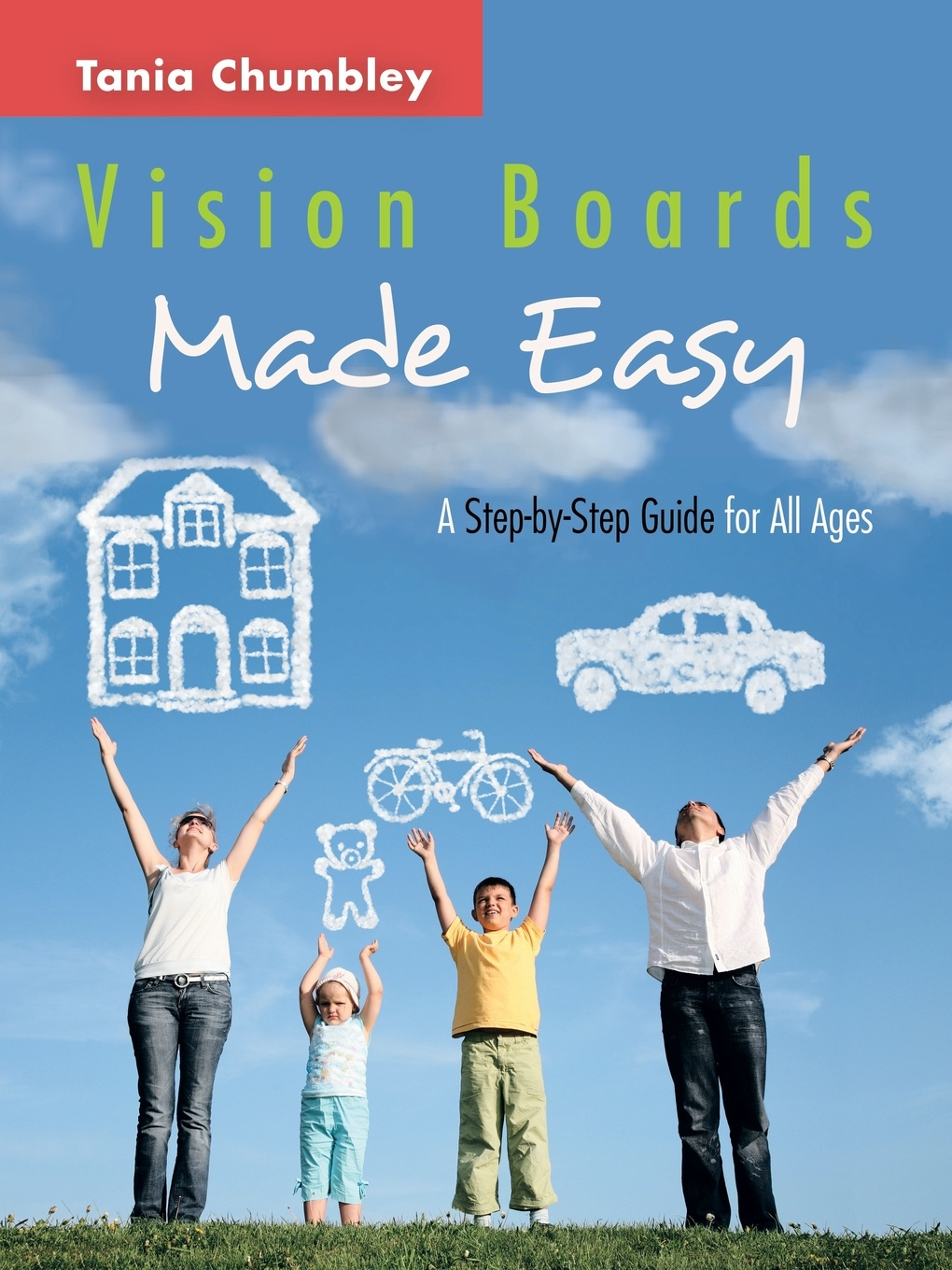 Фото - Tania Chumbley Vision Boards Made Easy. A Step by Step Guide module stm8a discovery include 2 boards stm8 development board embedded st link v2 can lin