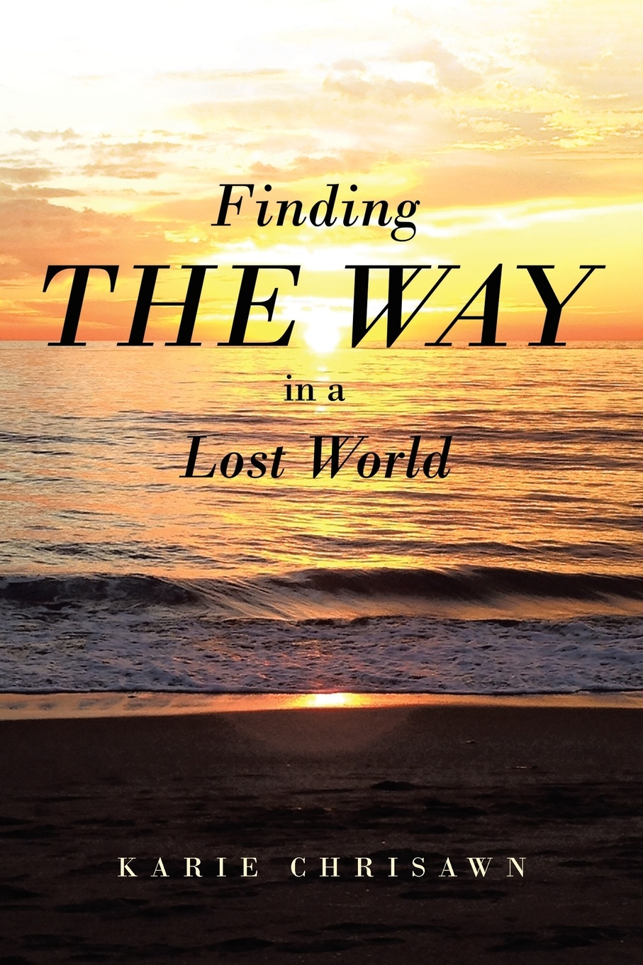 лучшая цена Karie Chrisawn Finding The Way In A Lost World