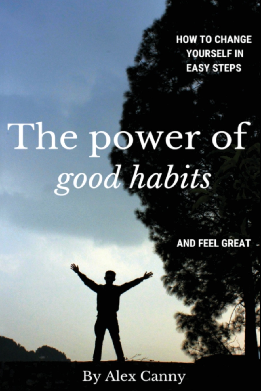 Alex Canny The Power Of Good Habits. How To Change Yourself In Easy Steps And Feel Great jeffrey magee your trajectory code how to change your decisions actions and directions to become part of the top 1