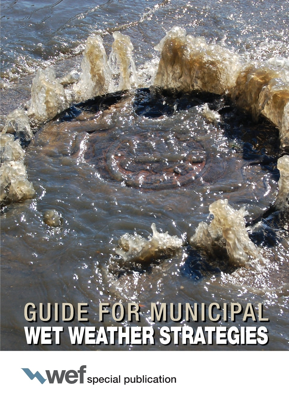 Water Environment Federation Guide for Municipal Wet Weather Strategies water environment federation sustainability reporting statements for wastewater systems