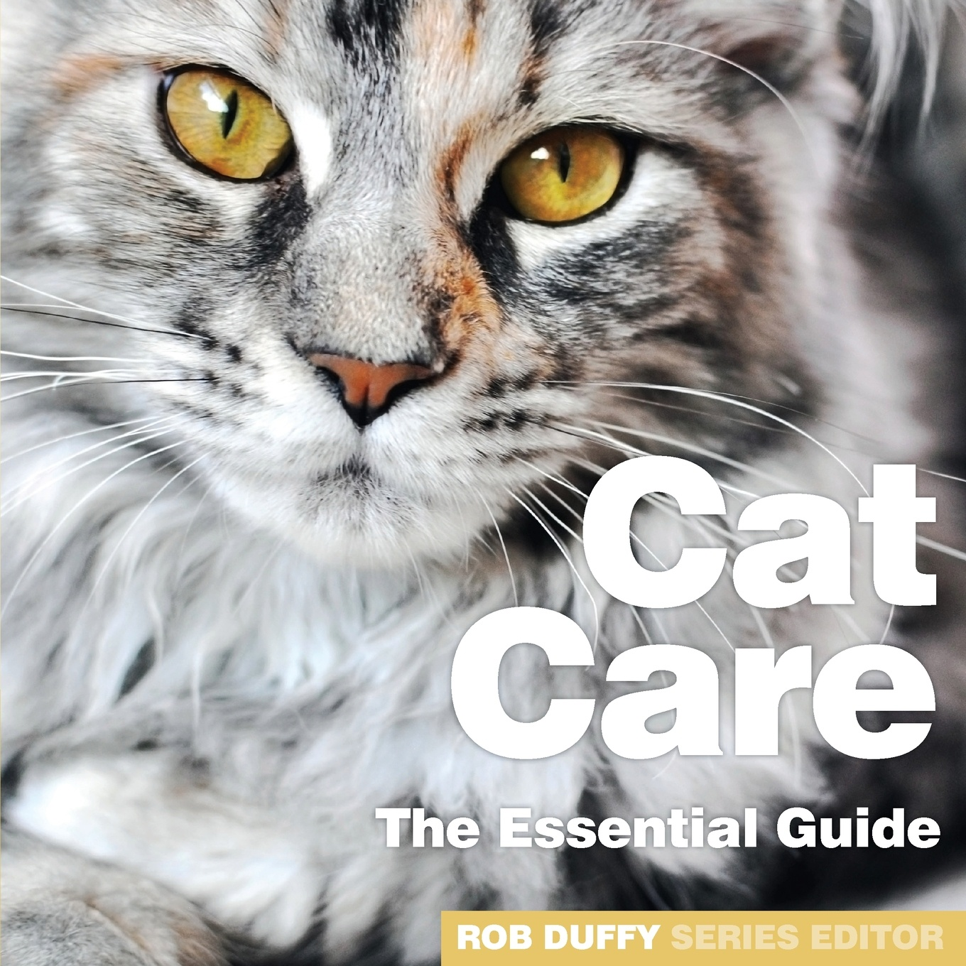 Cat Care. The Essential Guide kull v3 cat and the skull
