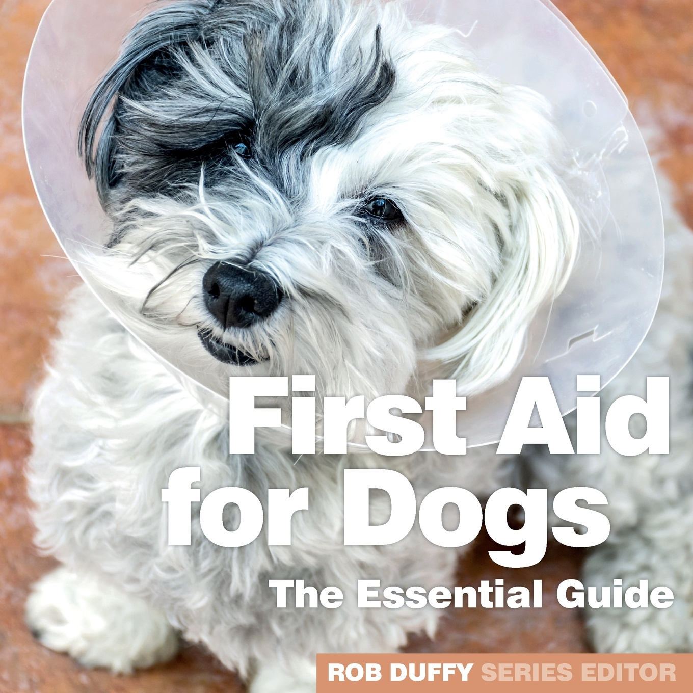 Фото - First Aid for Dogs. The Essential Guide левчук и костюченко м назаров а first aid in case of accidents and emergency situations course book