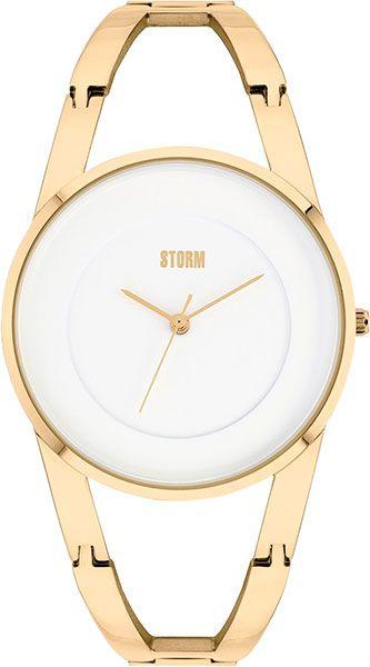 Наручные часы Storm ODESA 47381/GD цены