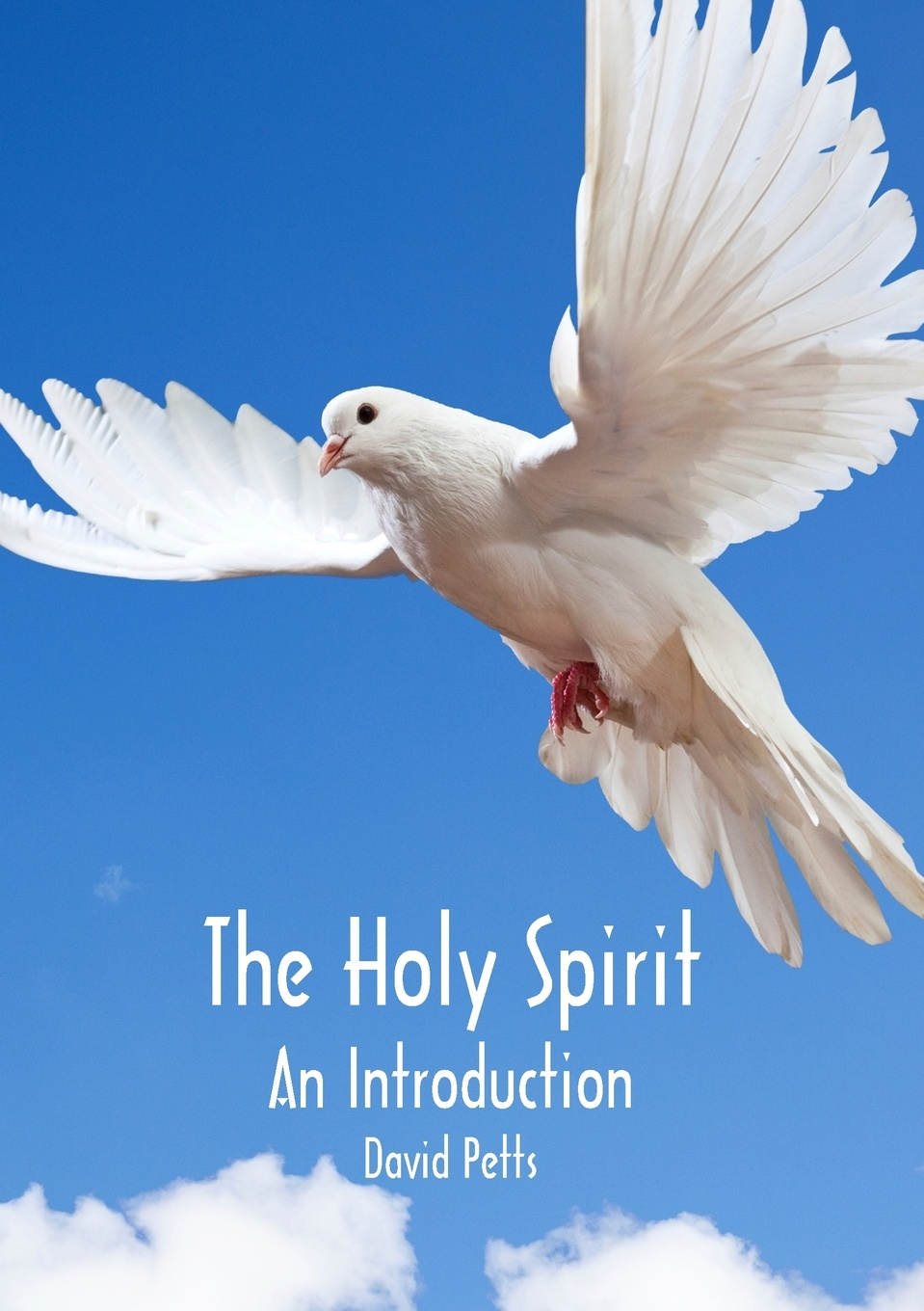 David Petts The Holy Spirit, An Introduction what the spirit is saying to the churches