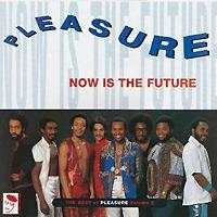 Pleasure Pleasure. Now Is The Future: The Best Of Pleasure. Volume 2 (LP) jule mcbride the pleasure chest