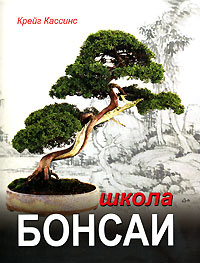 Обложка книги Школа бонсаи