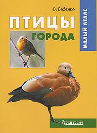 http://www.ozon.ru/multimedia/books_covers/1000967822.jpg