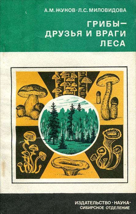 Источник: Жуков А. М., Миловидова Л. С., Грибы - друзья и враги леса