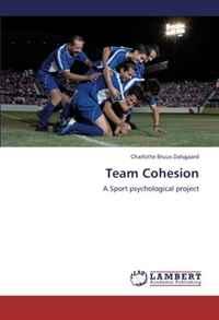 Источник: Charlotte Bruus Dalsgaard, Team Cohesion: A Sport psychological project