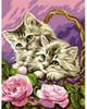 KSG Картина по номерам Котята в корзинке - изображение