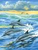 KSG Картина по номерам Дельфины - изображение