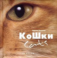 Кошки / Cats #1